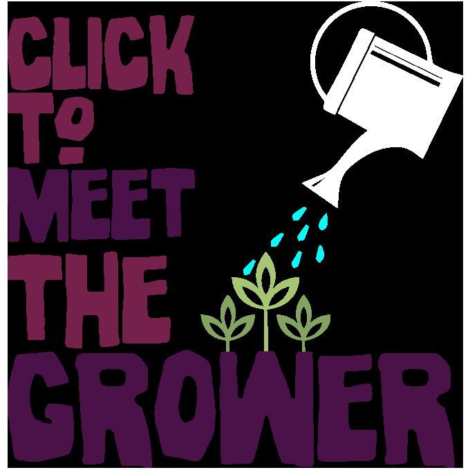 Meet the Beetroot Grower