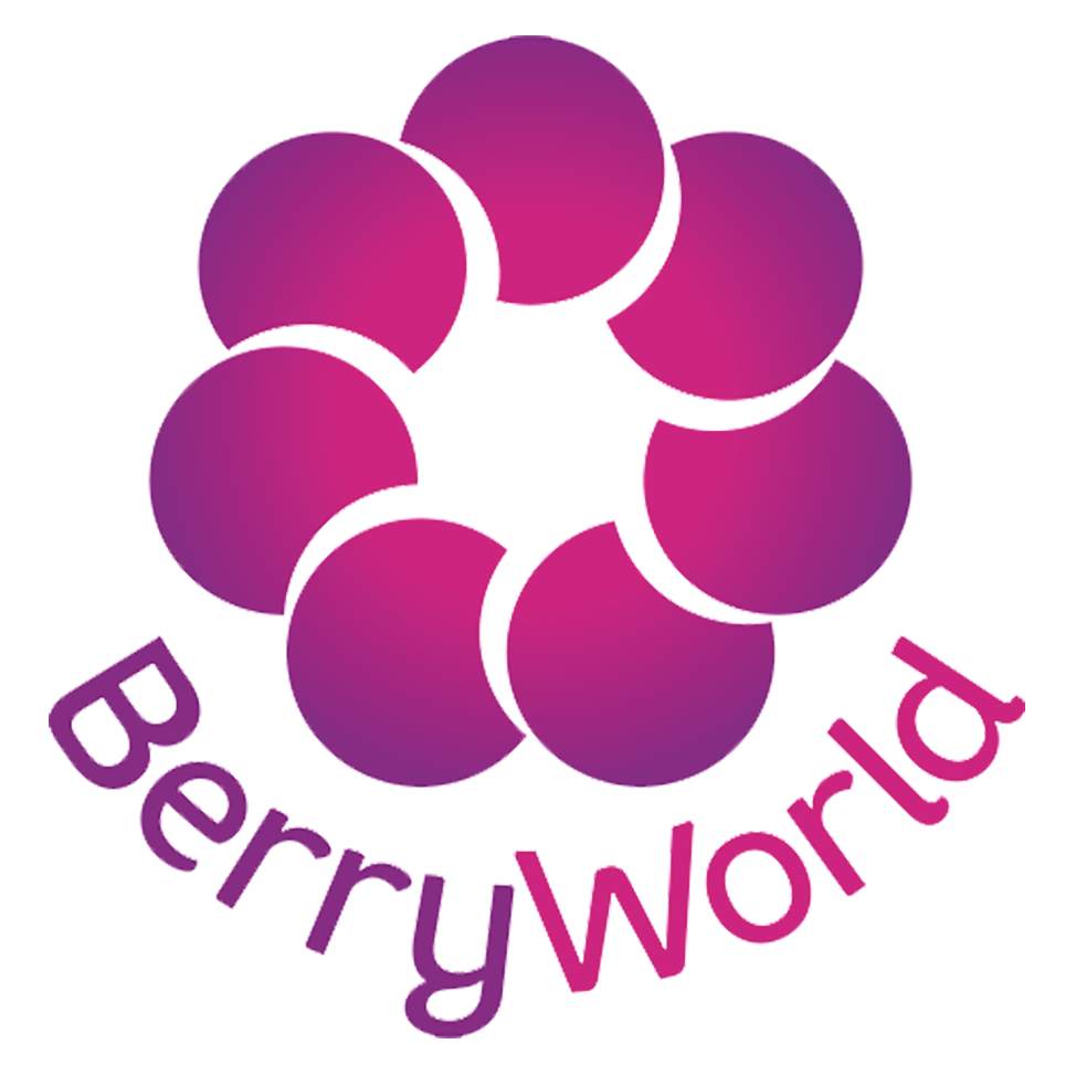 berryworld logo